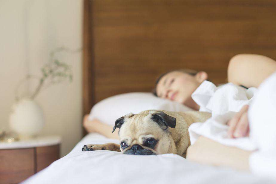 Create a Morning Routine to Simplify Your Day as a Stay at Home Mom